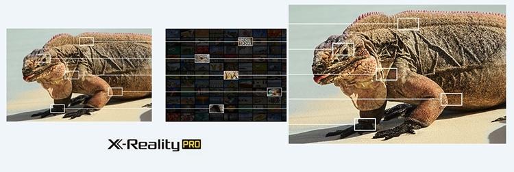 Vi xử lý X-Realyty Pro cho độ sắc nét vượt trội