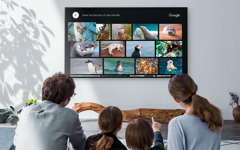 Smart Tivi Sony 49 inch KDL-49W800F– Kho giải trí trực tuyến khổng lồ
